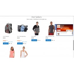 Magento Social Media like Floating Sidebar on the Home Page